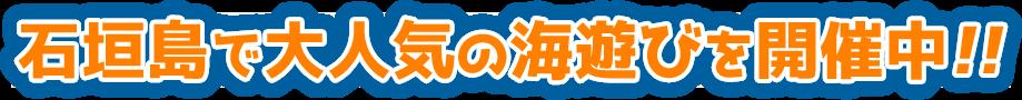 石垣島で大人気の海遊びツアー