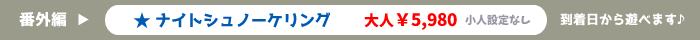石垣島ナイトシュノーケリング