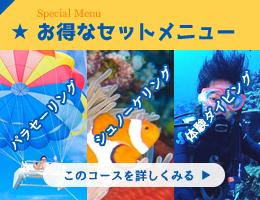 石垣島マリンツアーセットコース